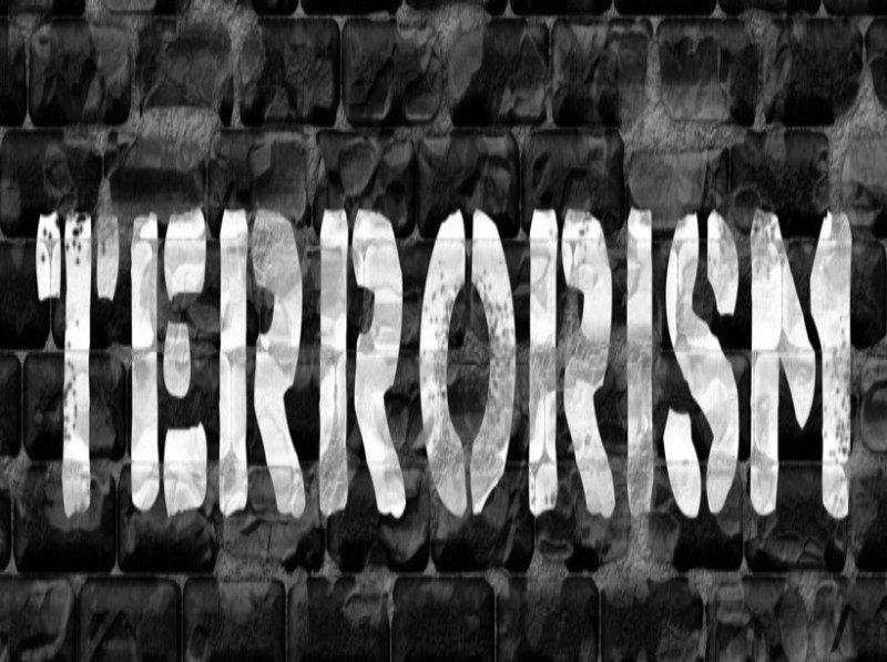 'India Won't Be Breeding Ground For Terrorists' Says Sanjay Kumar Sanju