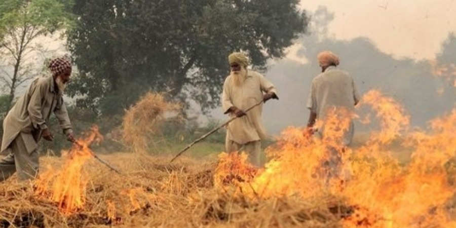 'Crop residue burning gobbles up $30 bn annually'