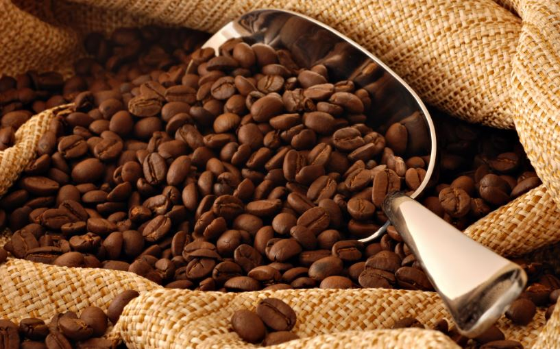 Coffee: the Saviour