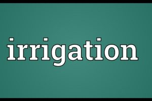 State Irrigation