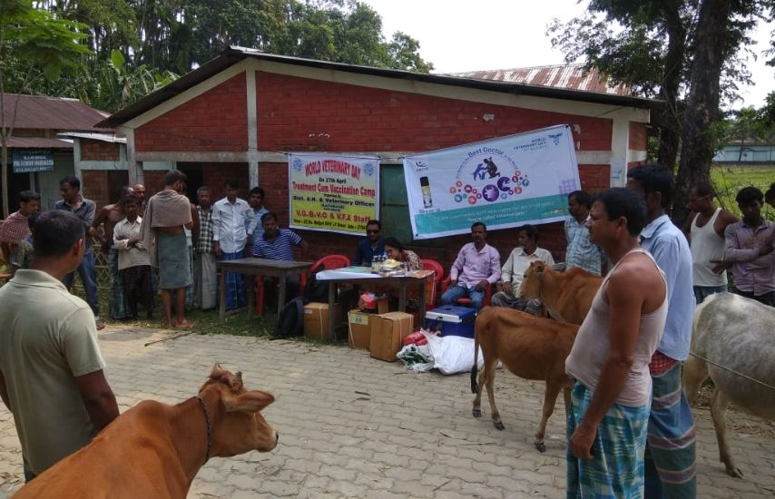 World Veterinary Day observed in Hailakandi district
