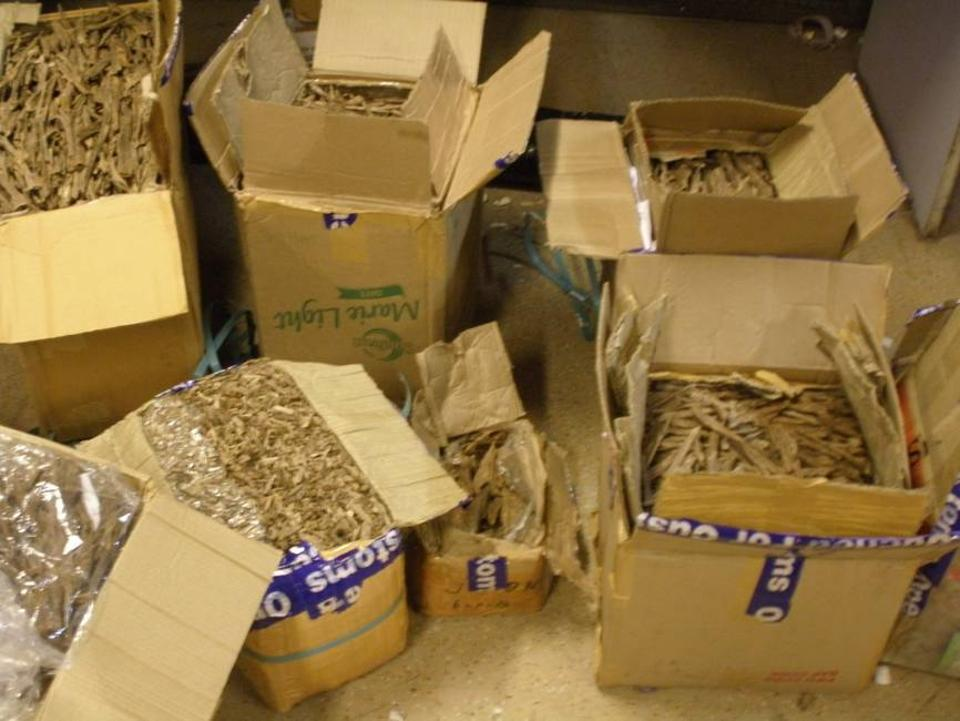 Agar wood smuggling: One arrested from Rajdhani Express