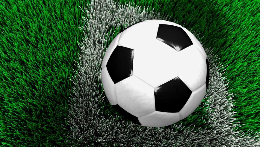 Dortmund, Hoffenheim victorious in German Bundesliga