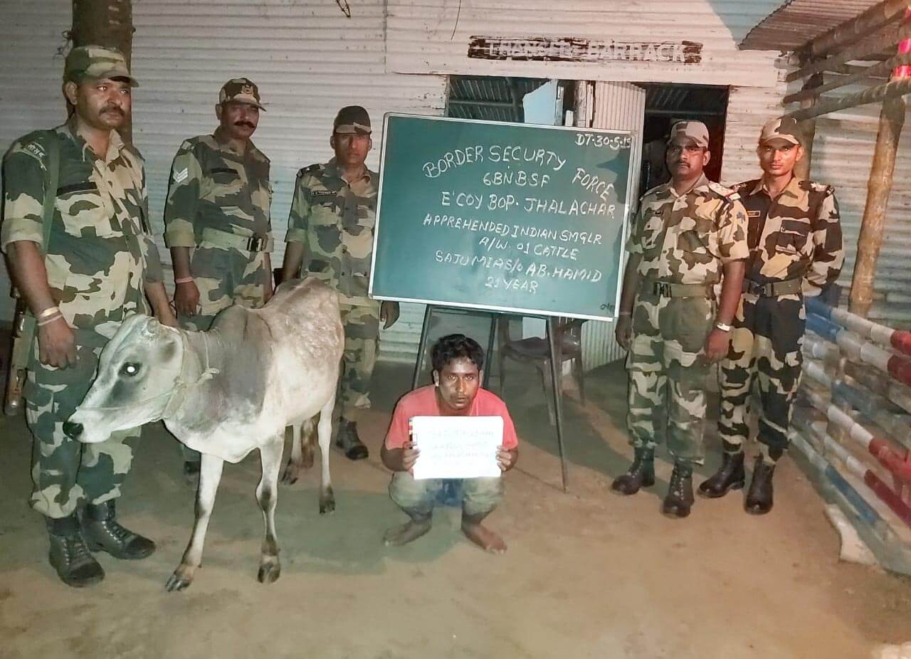 Two cattle smugglers apprehended by troops of Border Security Force of Guwahati Frontier