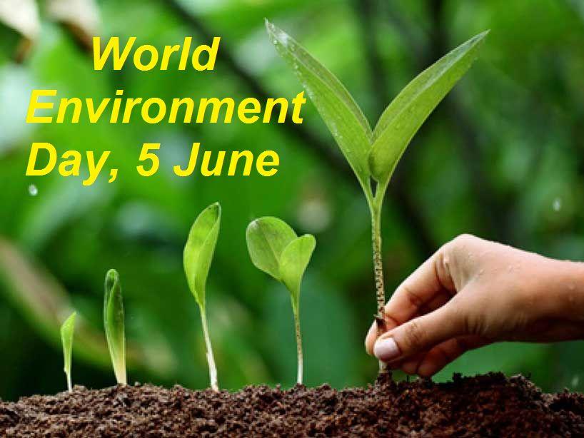 World Environment Day: Plantation Drive Today In Shillong