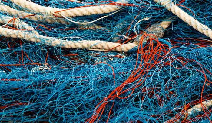 Fishing nets seized during an operation by the Fishery Department of Lakhimpur