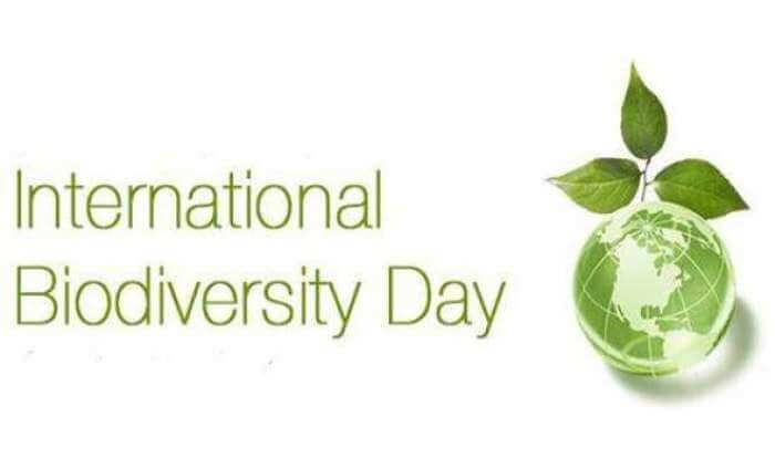 International Bio-diversity Day