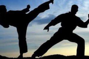 Arunachalee karateka