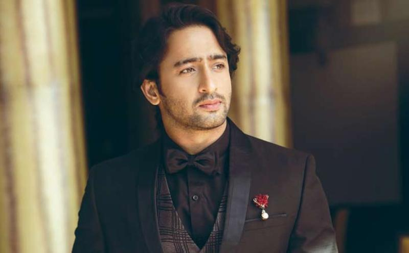 'Big Filmmakers Don't Want TV Face As Lead' Says Shaheer Sheikh
