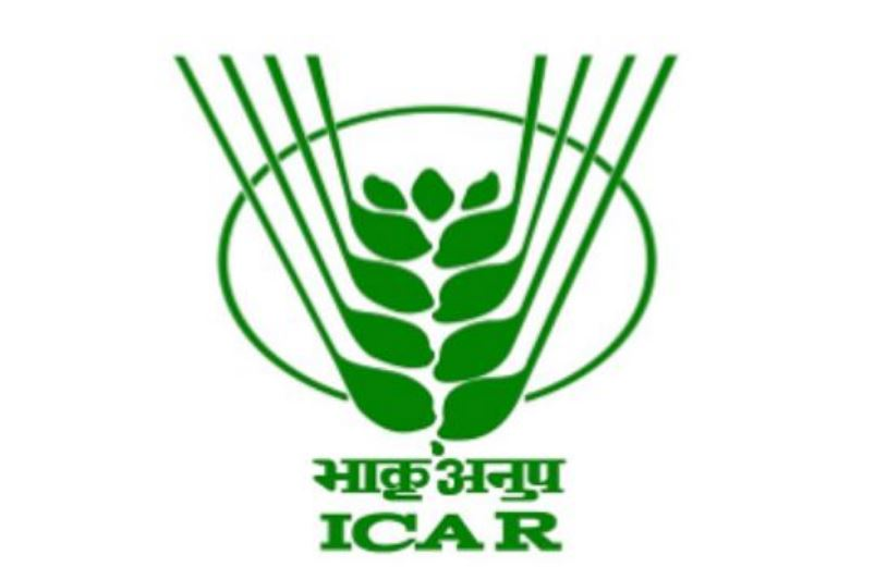 ICAR Research Complex for North Eastern Hill Region Jobs For Junior Research Fellow