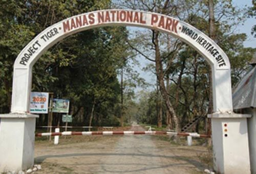 Workshop on human-snake conflict held at Manas National Park