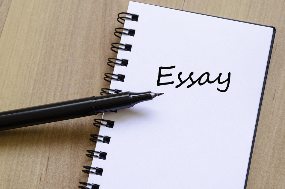 online essay paper writting