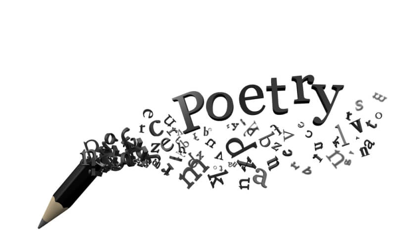 A Poem Heavily Laden With Provocation!