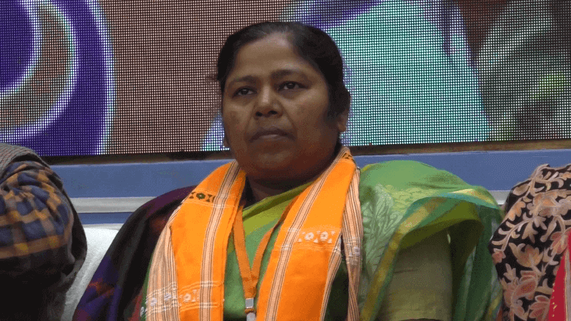 Railway Plan To Execute 491 Projects In Northeast: Pratima Bhowmik