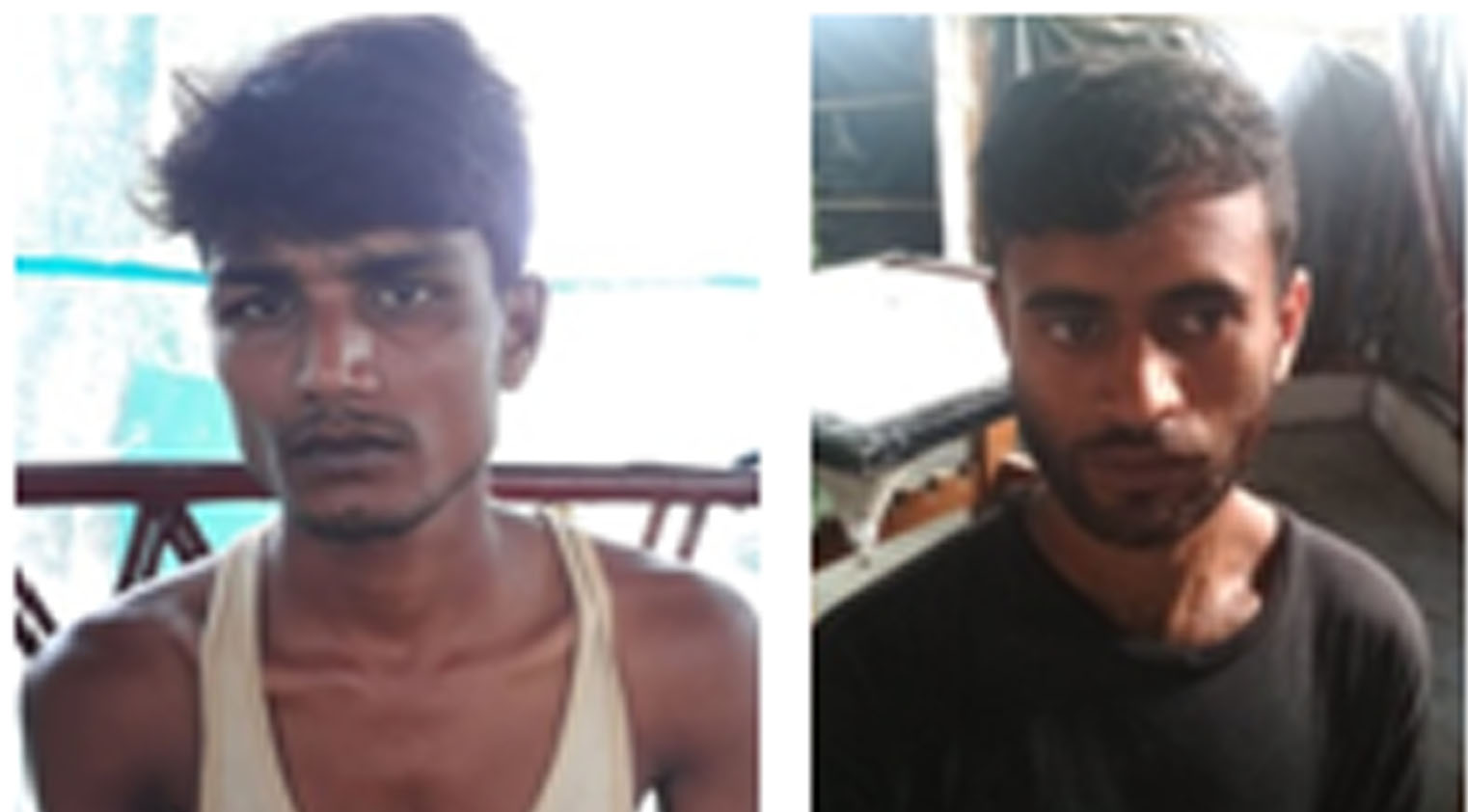 BSF apprehended two Indian cattle smugglers along with cattle in two separate operations