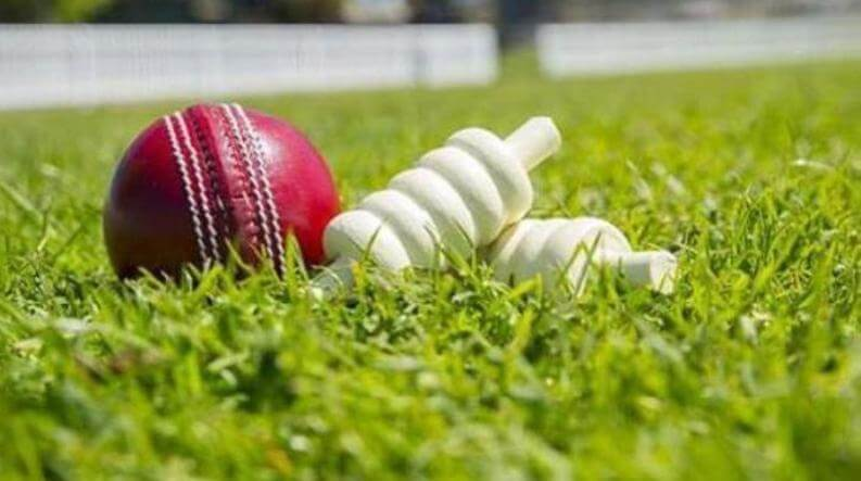 World Cup Match Ball Sold For Rs 1.5 Lakh