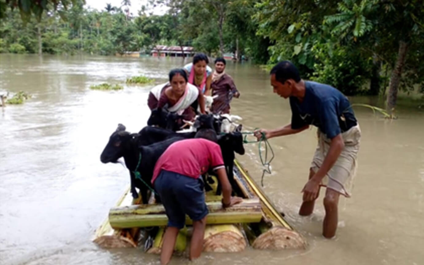 Assam Flood Havoc: 14 lakh populations affected in 25 Districts