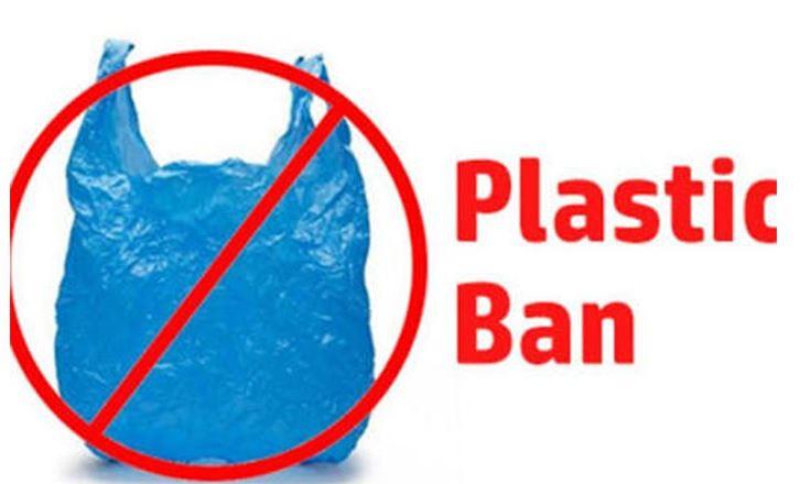 Image result for plastic ban