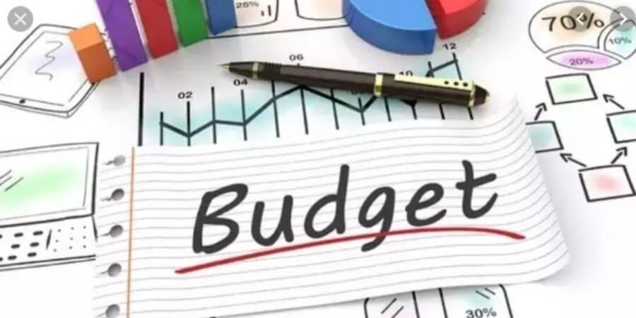 Food, fertiliser, urea, petroleum subsidies touch 51% of Budget Estimates