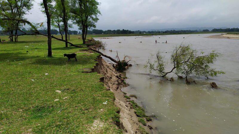 Massive erosion by Deergha River swallows Lalpani Seuj Kshetra in Lakhimpur