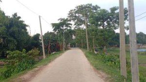 Balarbhita