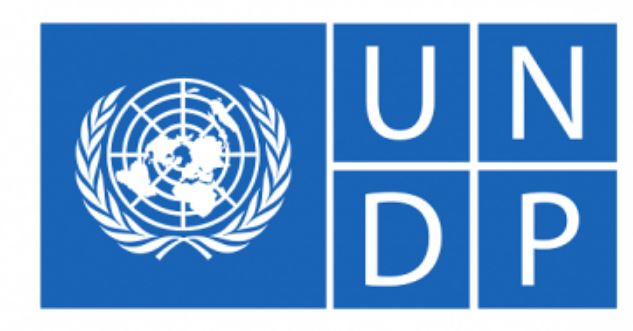 United Nations Development Programme Jobs for Consultant