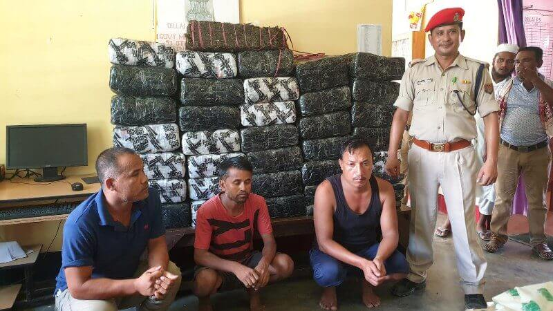 Huge Cache of Cannabis Seized, Three Arrested by Dillai Police
