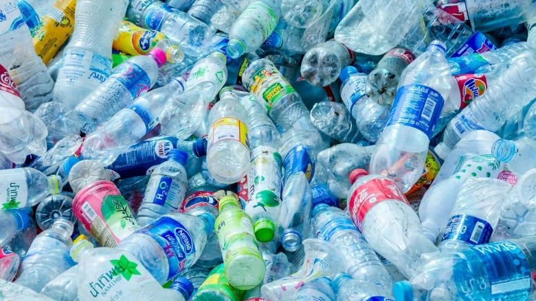 Massive Rally AgainstPlastic Carried Out At Khonsa