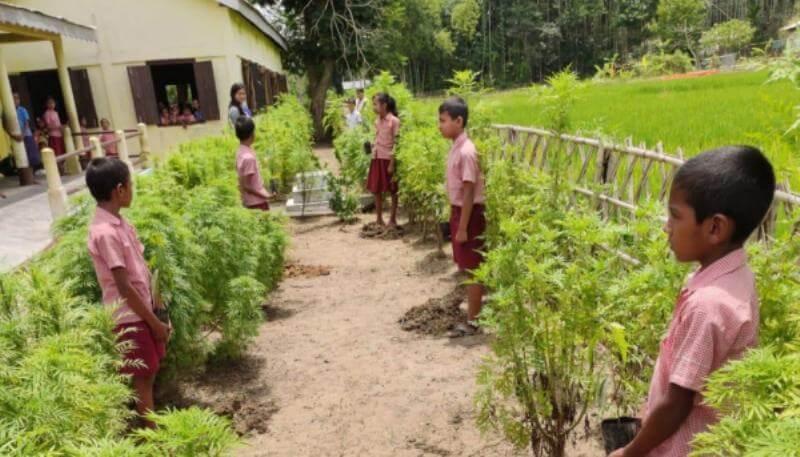 Green and Clean Award to No 253 Harishnagar LP School In Hailakandi