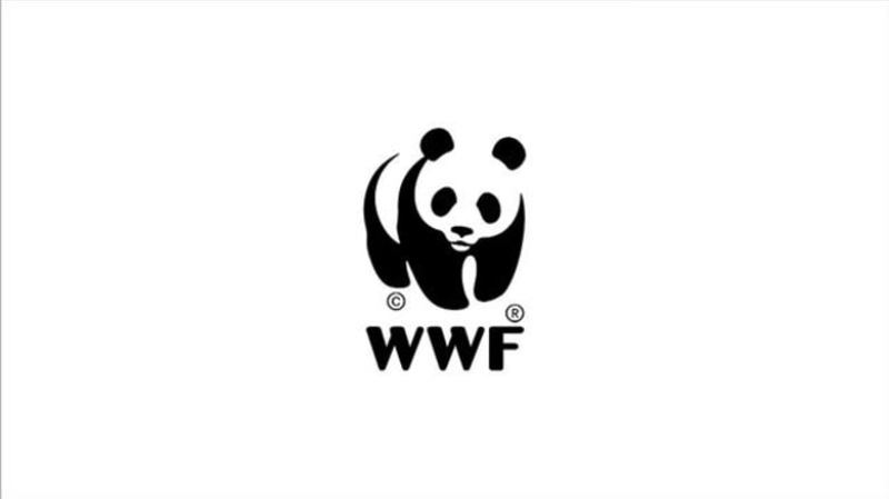 WWF India Job Senior Project Officer 2019