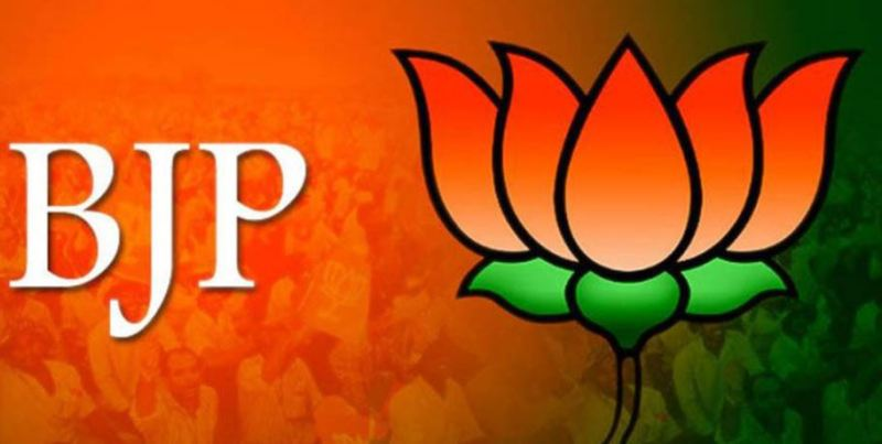 Drastic changes in State BJP unlikely in Assam