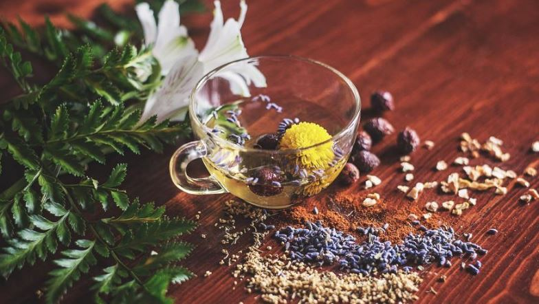 Six Herbs to Keep you Warm During Winters