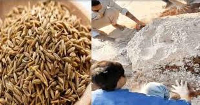 30,000 kg fake Cumin Made From Broom Bits Seized in Uttar Pradesh