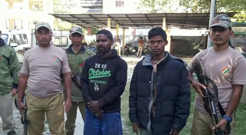 Illegally carried sown Sal logs & Non-Sal Logs seized in Kokrajhar, Two arrested