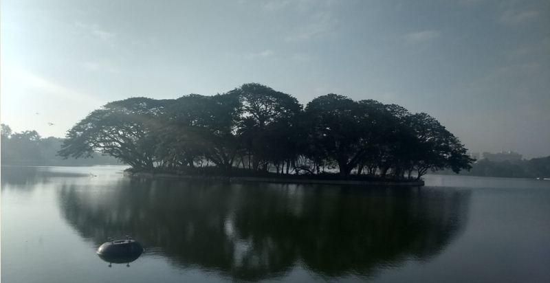 The pleasant Breeze of Bangalore