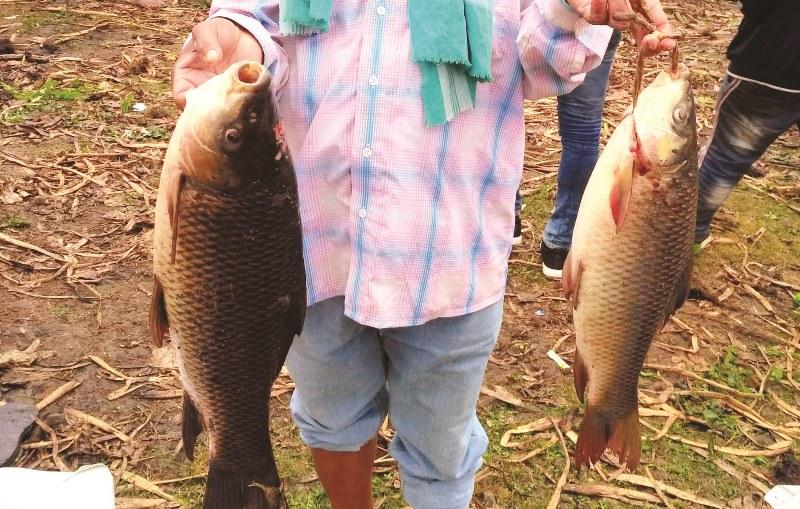 Community Fishing at Deepor Beel Begins