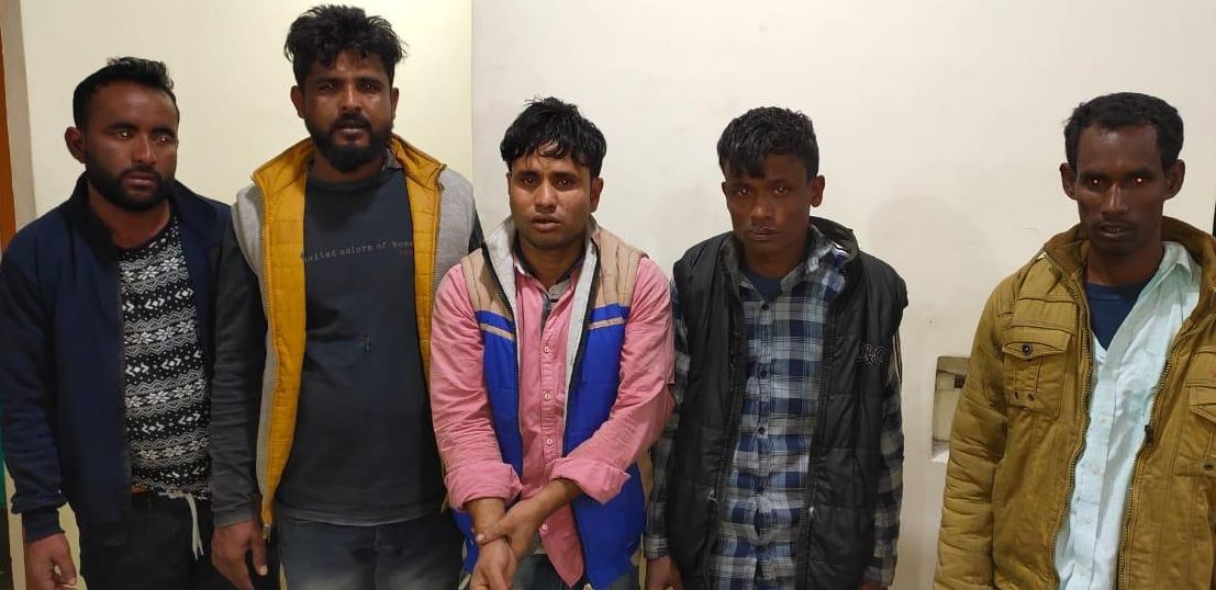 Mangaldai Police arrested five cow lifters