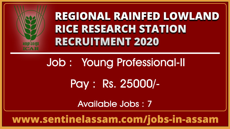 Regional Rainfed Lowland Rice Research Station Recruitment 2020