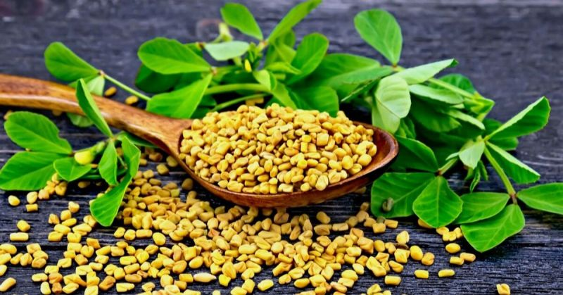 Fenugreek (methi) face pack to cool the skin