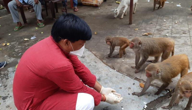 Golokganj MLA Ashwani Roy Sarkar feeds monkeys at Mahahaya Dham & Snan Ghat