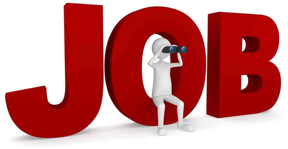 Meghalaya Society for Social Audit & Transparency Recruitment 2020