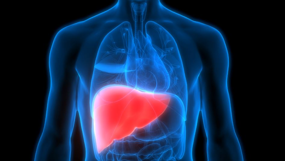 Here are the five warning signs of liver diseases