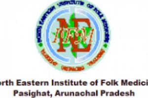 North Eastern Institute of Folk Medicine